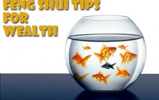 Alternate Healing - Fish Tank - Feng Shui tips for Wealth