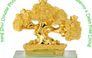 Feng Shui Double Phoenix Coins Tree for Financial Prosperity and Debt Free Living - AlternateHealing.net
