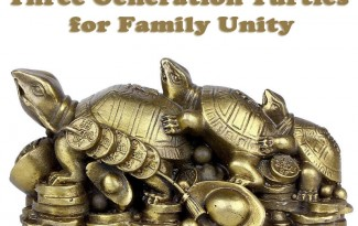 Three Generation Turtles – Feng Shui Remedy for Family Unity - AlternateHealing.net